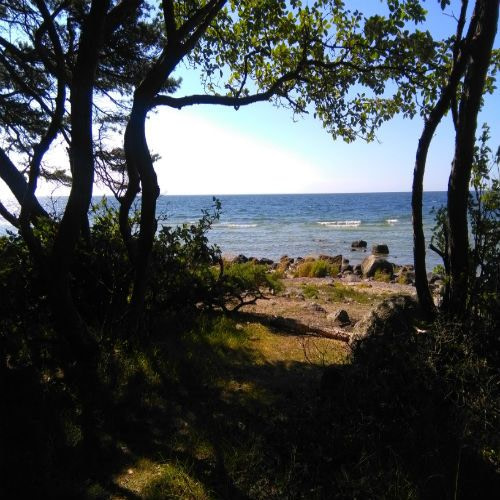 Sommar på Gotland
