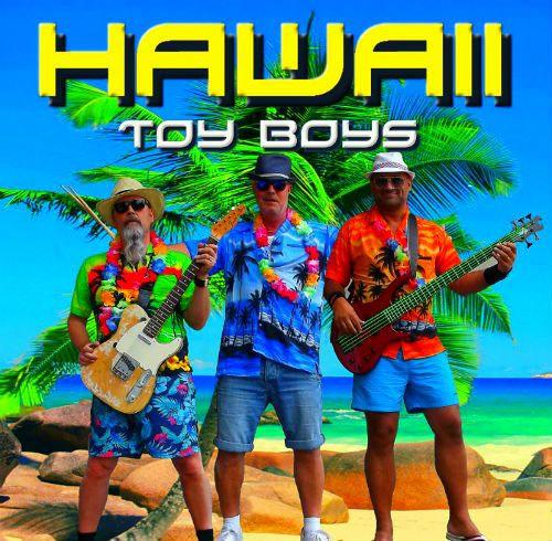 Sommartema till fest. Palmer, solstolar och Hawaiiskjortor. Partymusik med allt från schlager, pop, dansband till hårdrock
